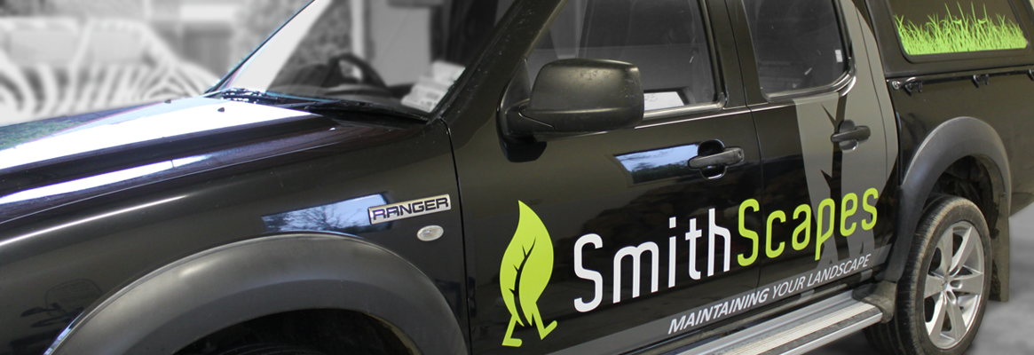 Smithscapes_Truck